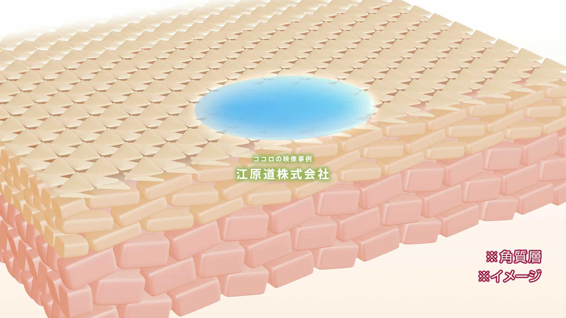 3DCG アニメーション映像制作「江原道株式会社」